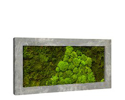 Green Inside - Three Lion - Moss Paintings